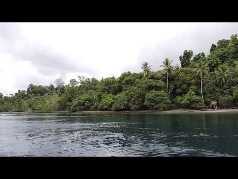 Pulau Salawati Kekayaan Sumber Daya Alam di Papua Barat - Papua Barat