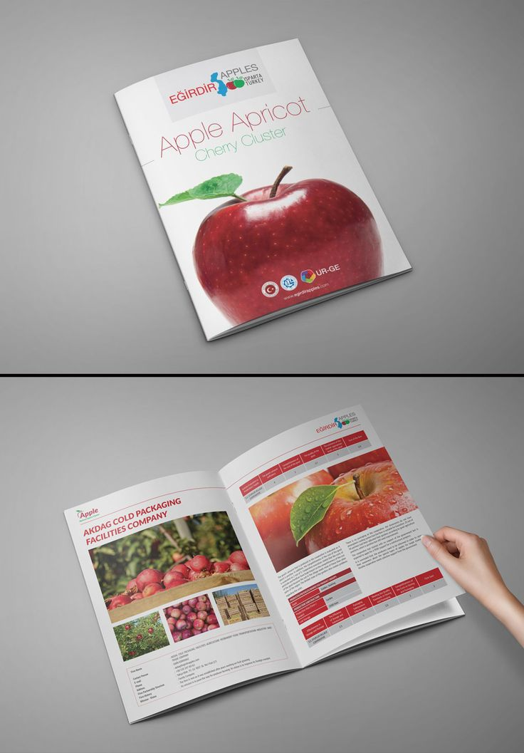 #egirdir #apple #catalog #design