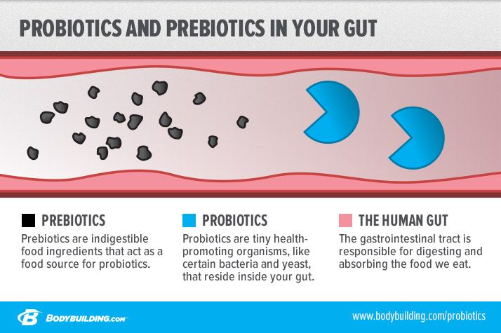 prebiotics and probiotics The best prebiotics and probiotics come from these foods nurture your microbiome and good gut bacteria.