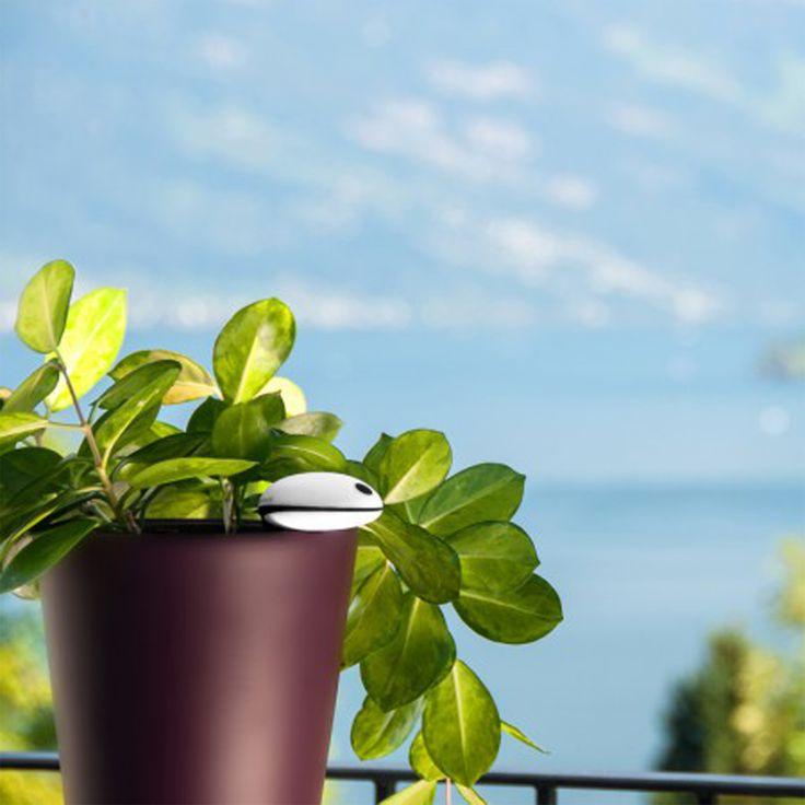 #yonos_dicas • Cuidam das vossas plantas? Mesmo? Isto pode ajudar... http://tecnologiay.com/ ;) #yonos_tips #koubachi #sensordeplantas