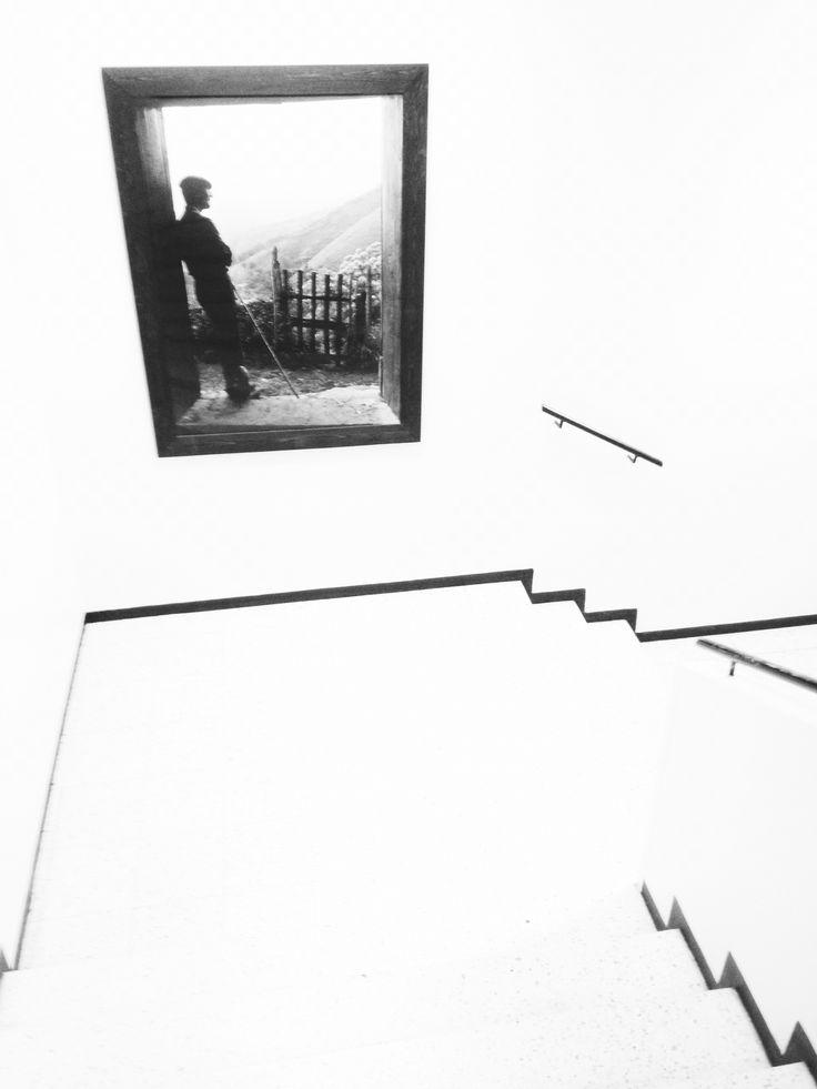 Arkisistakin tiloista löytää Film Noir- henkeä kun osaa katsoa.