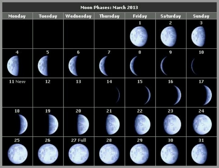 Phases for march | Moon Dance | Pinterest