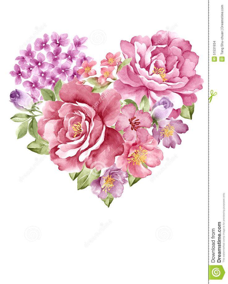 watercolor-illustration-flower-set-simple-white-background-51531934.jpg (1043×1300)