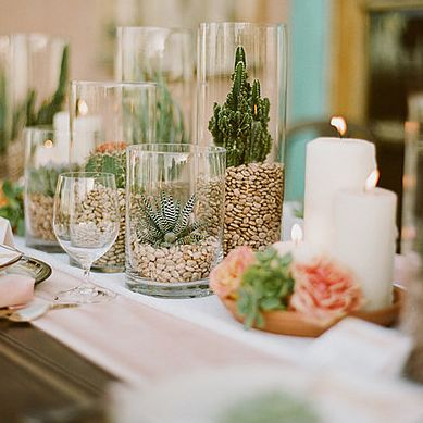 Displaying succulents in a jar. These were grouped as a wedding centerpiece.