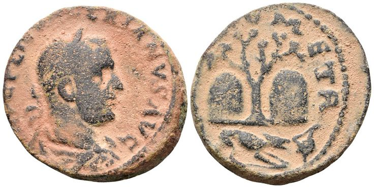 Valerian I Ӕ28 of Tyre, Phoenicia. AD 253-260. [IMP C PLIC VA]LERIANVS AVG, laureate and cuirassed bust right, wearing paludamentum / [COLTVRO?] META, olive-tree between the Amrosial Rocks, dog right in exergue, finding murex-shell