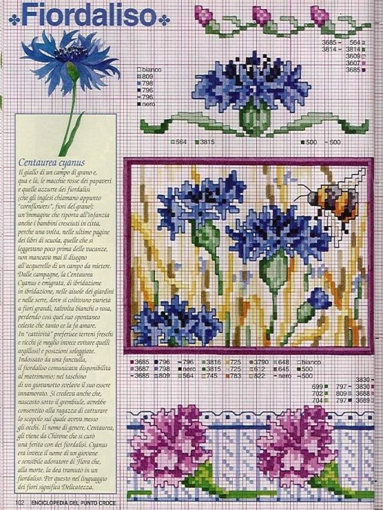 Gallery.ru / Фото #9 - Ботаника-цветы - irislena