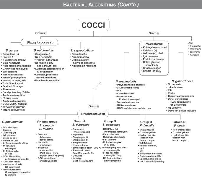 USMLE Step 1 Qbank - bacterial algorithms