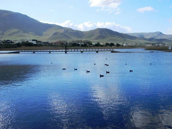Die vlei is vol in die winter
