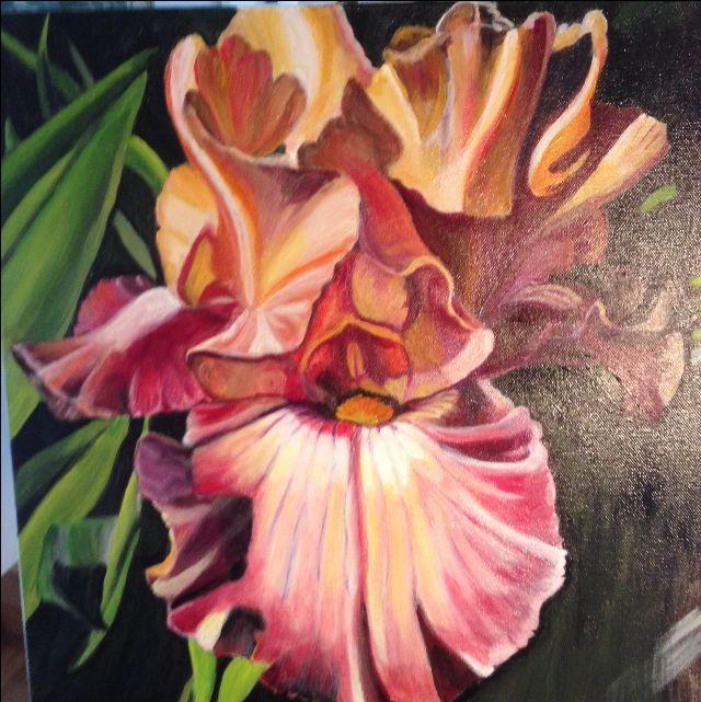 Second Burgundy Iris... both were sold