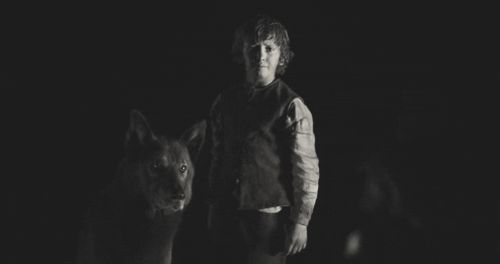 Pin for Later: A Quick Rundown of All 6 of the Starks' Direwolves on Game of Thrones Shaggydog
