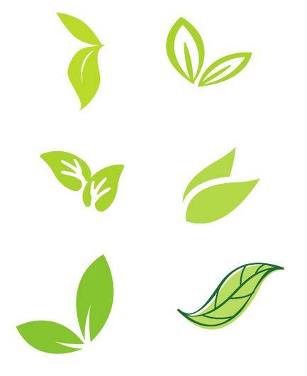 나뭇잎 일러스트 1 | 자료 | Pinterest