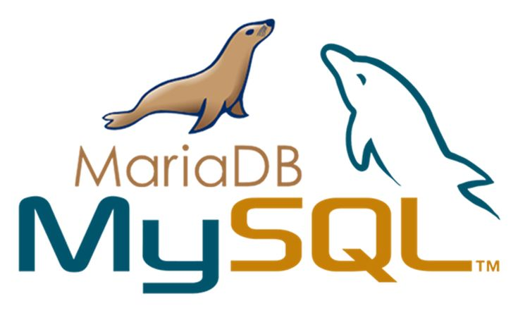 Net Solutions Adds MariaDB for Faster MySQL Database Performance \ Net Solutions Blog
