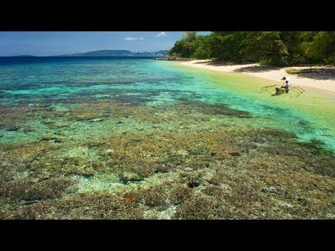 If you want to spend some days in paradise, Coral Eye Resort on Bangka Island in North Sulawesi is the place to go to. Everything about that island and surro...