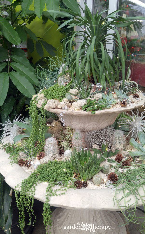 17 best images about gardening ideas on pinterest for Indoor gardening kalamazoo