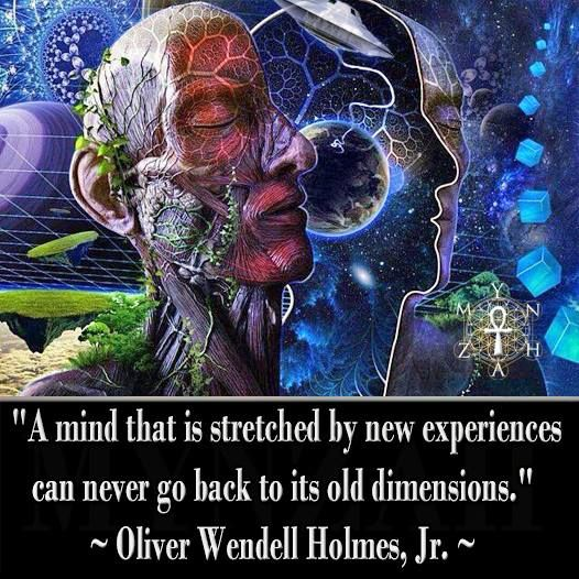 """""""A mind that is stretched by new experiences can never go back to its old dimensions."""" ~ Oliver Wendell Holmes, Jr."""