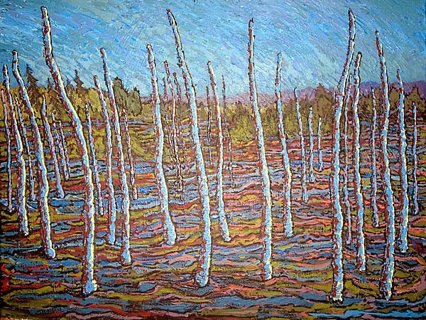 A once-thriving forest - time has turned it into swampland - Charlotte County near St. Andrews, NB, Canada