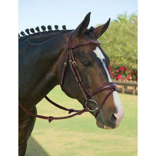 Dy'on Anatomic Bridle- a little different! I like it.