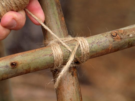 A reminder about lashing... useful for making garden structures.