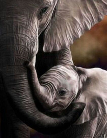Elephant: stands for good luck, wisdom and serenity :-)