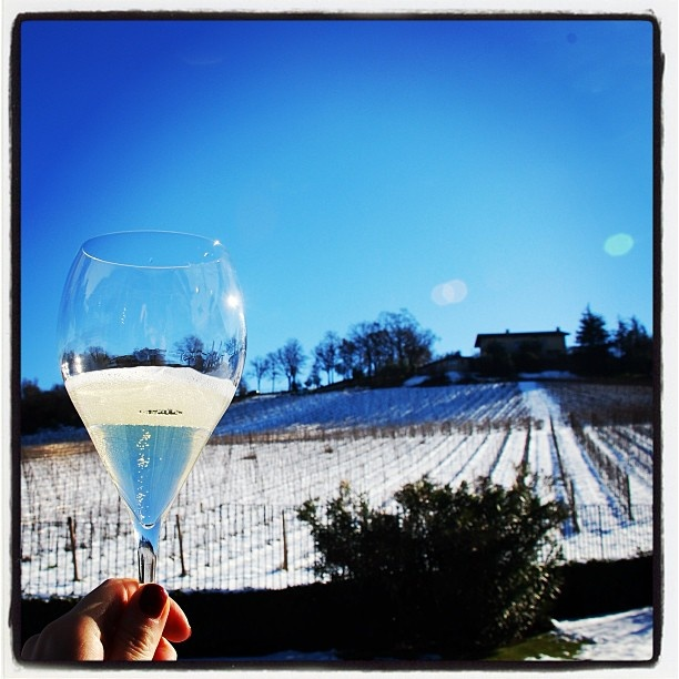 "@roncocalino's photo: ""Il bicchiere di Brut e la neve. #franciacorta #franciacortabrut #brut #vino #neve #panorama #bicchiere #wine #snow #landscape #glass #sky #blue #white #cold #winter #inverno #drink #winelover #instapic #instagramer #instamood #passion #emotion"""