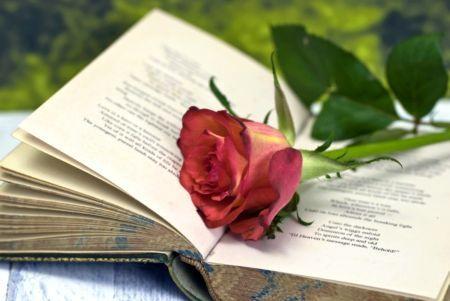 """""""È difficile dire con parole di figlio ciò a cui nel cuore ben poco assomiglio.  Tu sei la sola al mondo che sa, del mio cuore, ciò che è stato sempre, prima d'ogni altro amore…"""" (da """"Supplica a Mia Madre"""", Pier Paolo Pasolini)   Una Felice Festa della Mamma a Tutte le Madri, e a Tutte le Donne che si sentono tali per """"natura""""!  la redazione de """"imieilibri.it"""" (http://www.imieilibri.it)"""