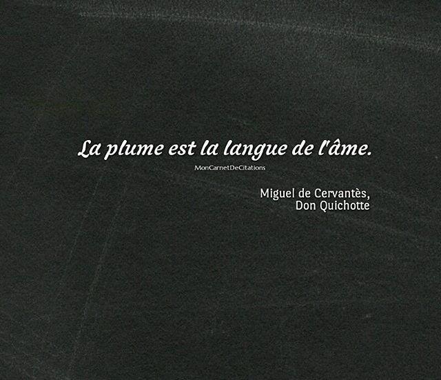 MIGUEL DE CERVANTES  |  DON QUIXOTE  |