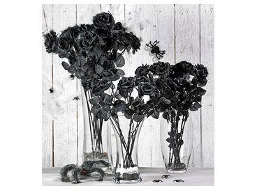 Zwarte rozen | Xenos