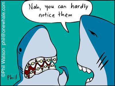 A Shark with Braces. #fridayfunnies #orthodontics
