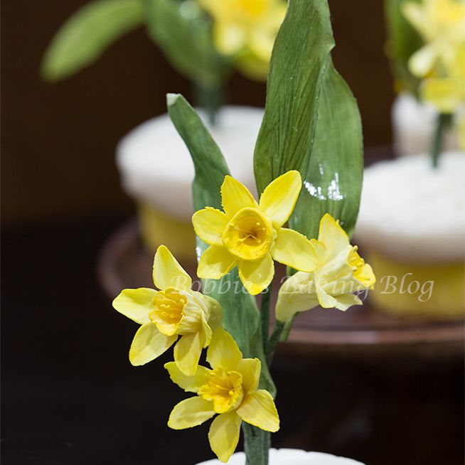 Edible Daffodil Cake Decorations