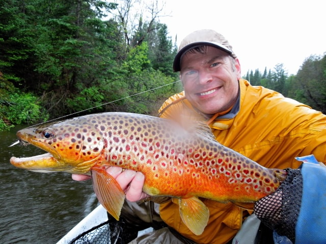 Manistee river trout michigan locations pinterest for Where to fish