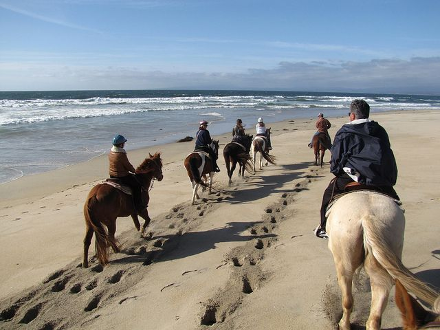 Horseback Riding Tours Monterey Ca