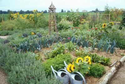 17 best images about vegetable gardens french potager on for Le jardin potager