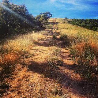 Pioneer Women's walk | 24 Adelaide Walks That Will Take Your Breath Away