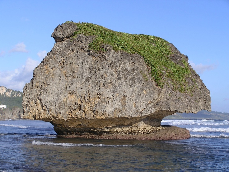Mushroom Rock Bathsheba Barbados