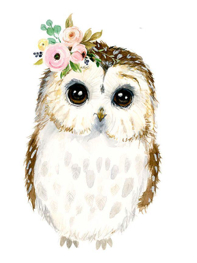 Watercolor Baby Owl Owlet Painting Woodland Nursery