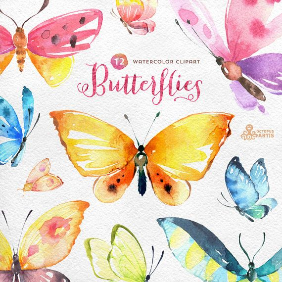 Butterflies Watercolour: 12 Separate hand painted clipart, diy elements, invitation, wedding, greetings, flowers, wings, digital butterfly