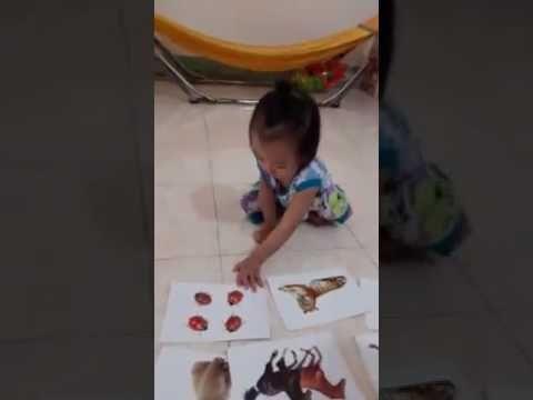 Hong Nguyen   Xitrum 16 thang tuoi hoc nhan dang cac con vat ne