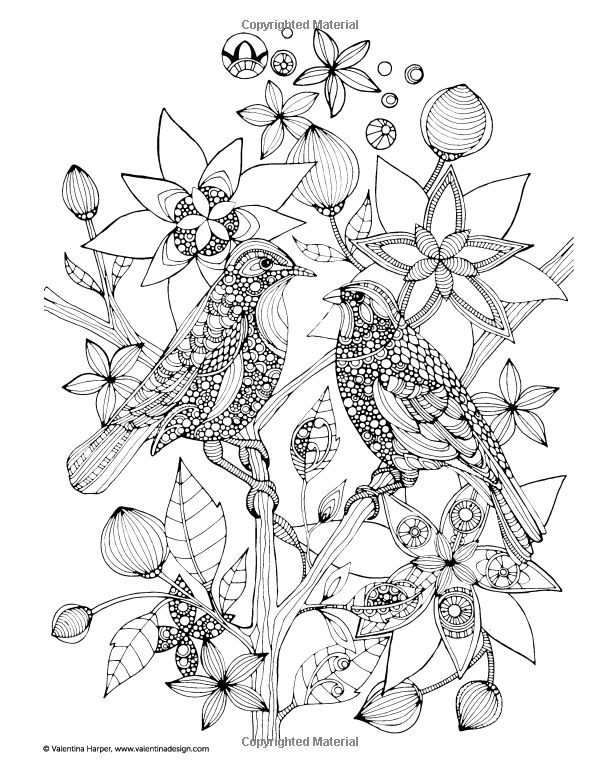 Creative Coloring Animals Art Activity Pages To Relax And Enjoy Design Originals