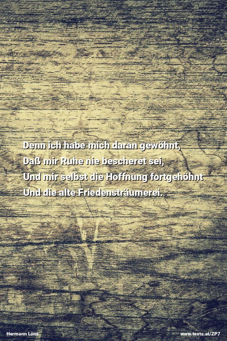 """In dem blühenden Holunderstrauch Singt der Spötter laut sein buntes Lied aus """"Rückfall"""" von Hermann Löns https://www.texts.at/ZP7  #Gedicht #Löns"""
