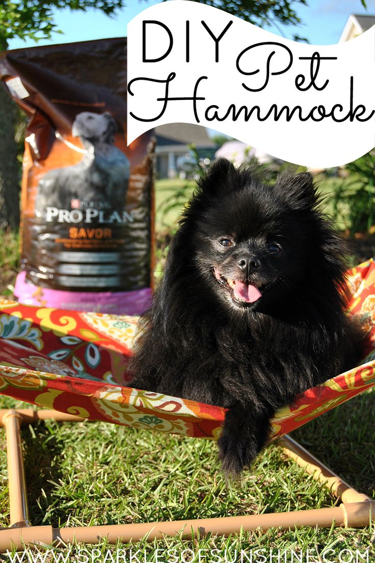 Celebrate summer outdoors with your pet thanks to this easy tutorial for a DIY pet hammock over at Sparkles of Sunshine.