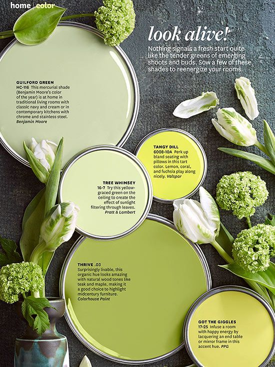 34 Best Greenery Pantone Color Of The Year 2017 Images On