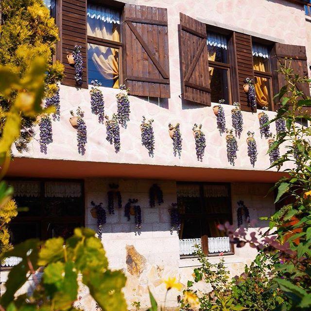 By @mycappadociatrip on Instagram ☆2017/04/05 15:38:20 ☆Üçhisar ☆可愛い宿😍なんかカッパドキアというよりはサフランボルみたい?#lifewelltravelled #instagram #instagood #sunny #vscocam #vsco #amazingplaces #trip #travel #turkey #cappadocia #holiday #hotel #pretty #トルコ#カッパドキア#海外#海外旅行 #風景#景色#写真部 #写真撮ってる人と繋がりたい #写真好きな人と繋がりたい #旅行#トラベル