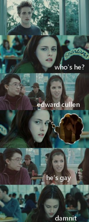 I LOVE the twilight series, (books and movies) but I also LOVE good jokes about the series. Hilarious!!! =D