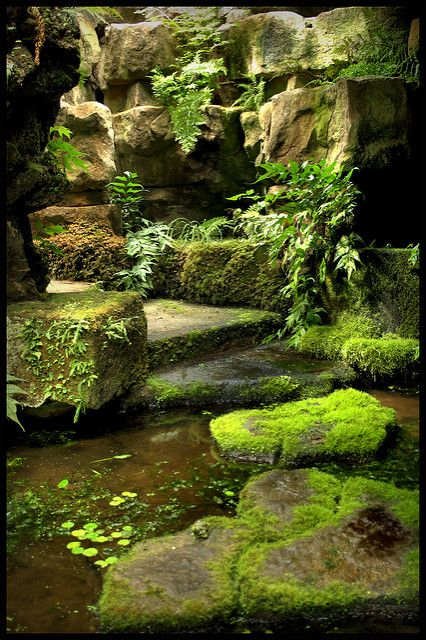 Hidden Gardens and Grottoes of Dewstow (5)