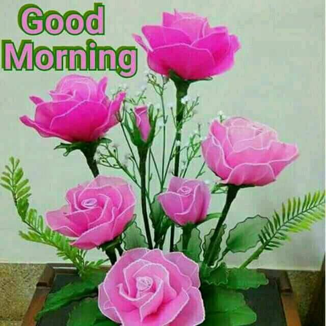 Good Morning Pictures 2018 In Hindi Punjabi English Good Morning