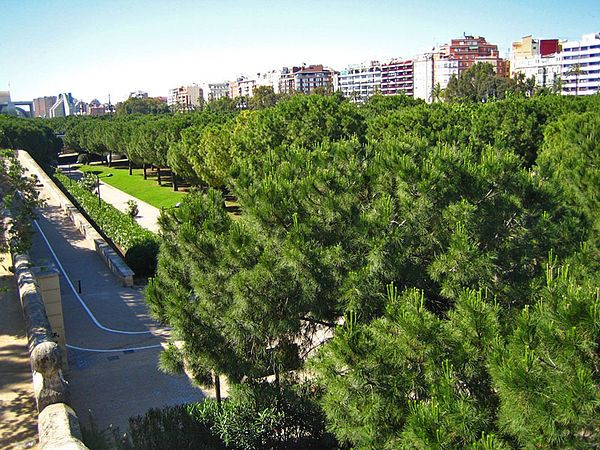 Turia-park: 11 km lang park in drooggelegde rivierbedding