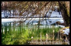 Lac de Thorenc à la fin de l'hiver (Alpes Maritimes) - © 2014