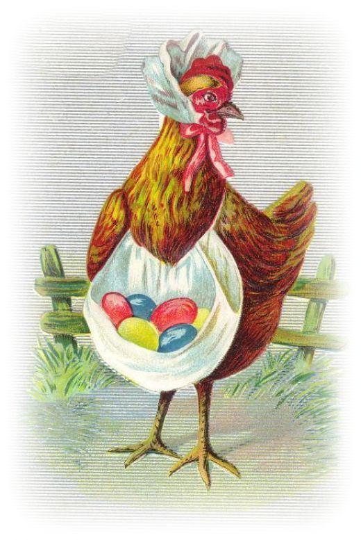 Курицы открытка
