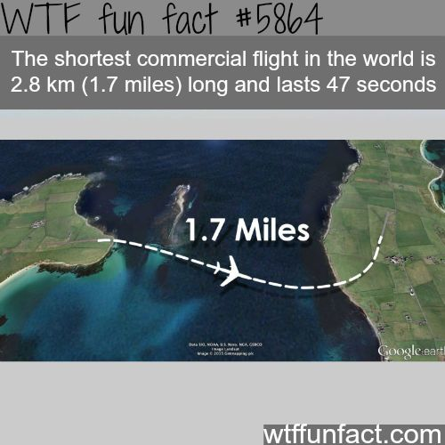 World's shortest commercial flight is 1.7 miles long and lasts 47 seconds - WTF fun facts