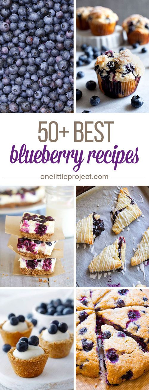 50+ Best Blueberry Recipes - I love fresh blueberries! These recipes look AMAZING!